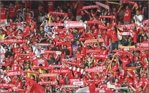 Soccer Fans
