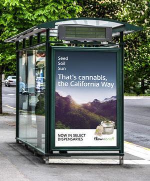 Cannabis Wholesaler Launches Ad Blitz