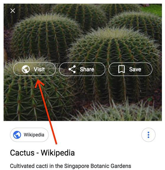 Google removes 'View Image' button as part of settlement with Getty