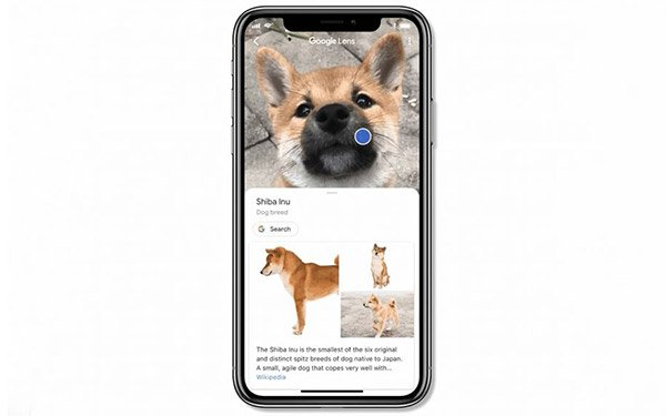Why Google Lens On Apple iPhone Is A Game Changer 12/13/2018