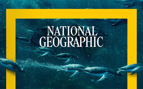 National Geographic Society Launches Fund For Journalists Covering ...