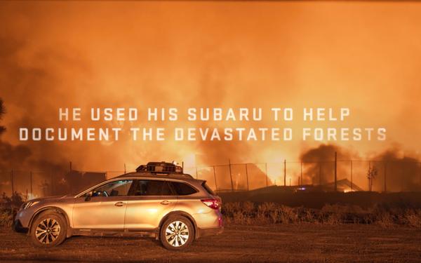 Subaru Helps Replant Trees In Fire-Ravaged California