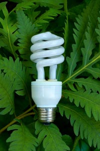 Lightbulb-Green-Products