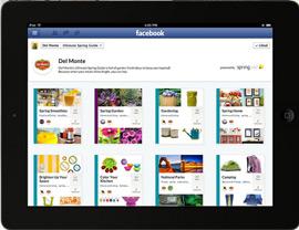 Ipad-Facebook-spring-B