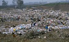 Landfill-B