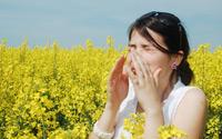 Allergy-Shutterstock-A