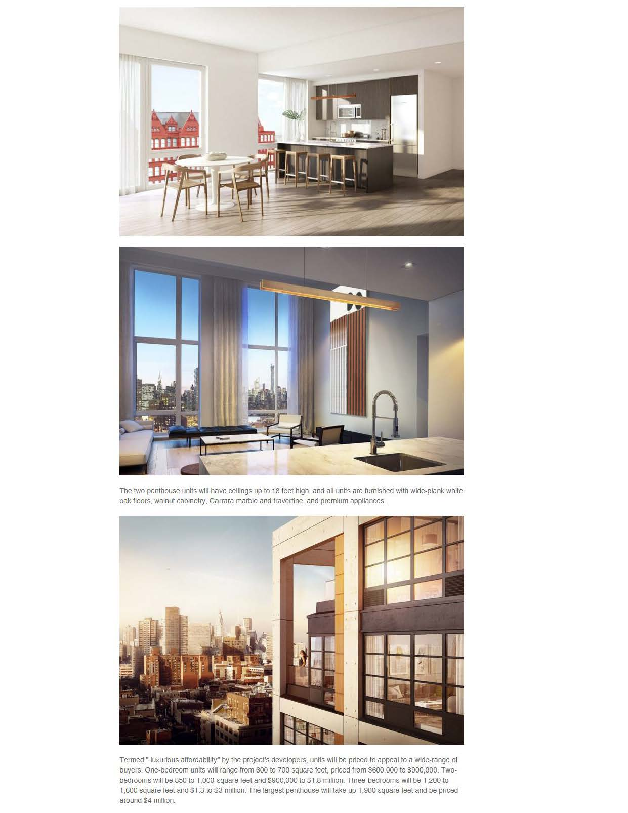 6sqft - Pricing and Renderings Released for The Jackson, Industrial-Inspired Condo in Long Island City - 2.22.16_Page_2