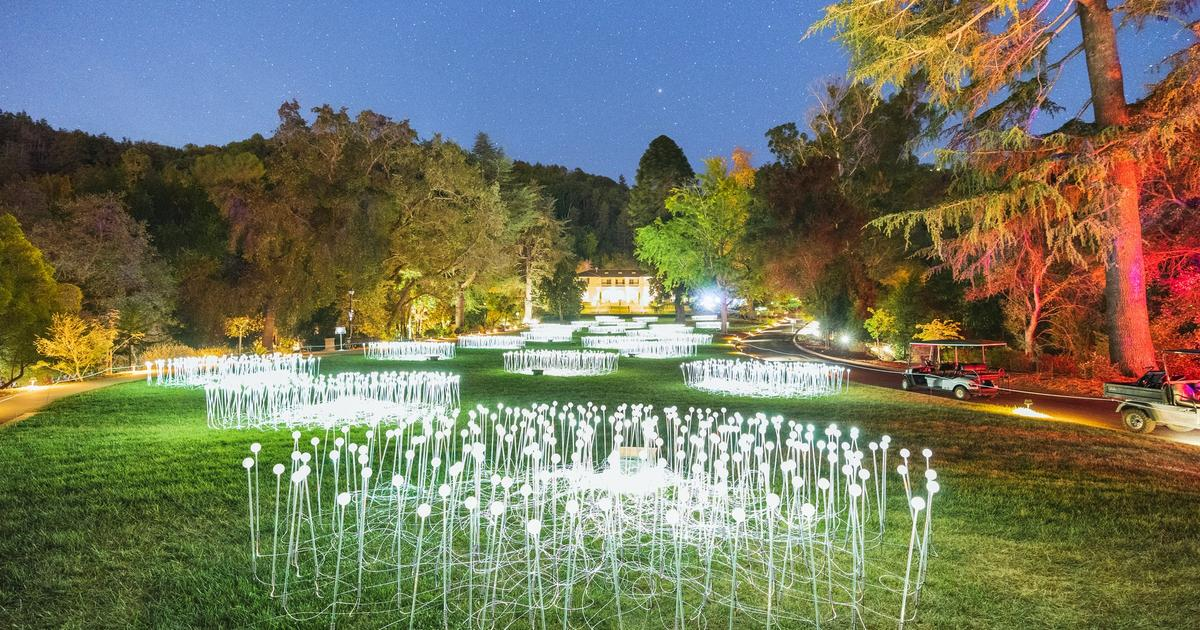 Bruce Munro at Montalvo: Stories in Light