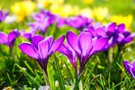Spring is here: 6 ways to breathe new life into your media relations efforts