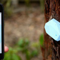 Retail's Next Big Bet: iBeacon and the Promise of Geolocation Technologies | Innovation Insights ...