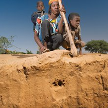 Do We Treat Our Soil Like Dirt?