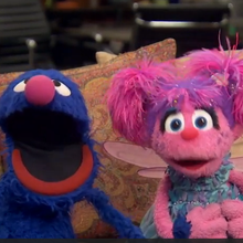 Sesame Street's Grover And Abby LIVE