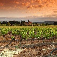 Top 10 Wine Regions in Europe by Train