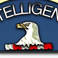 British Teen Arrested Over CIA Hack
