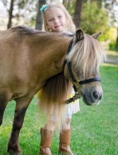 Envision Brings Horses to Help Kids at Camp Kangaroo - PR.com