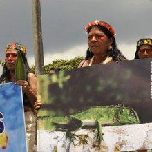 """Mujeres indígenas contra petroleras chinas en Ecuador: """"Estamos dispuestas a morir por nuestra s..."""