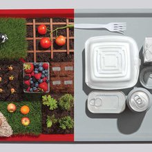 The War on School Lunch - Modern Farmer