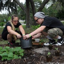 New community garden is latest in a growing trend in New Port Richey