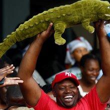 Emmerson Mnangagwa: 'The Crocodile' who struck back