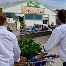 Cultiva 2017: Dabbing, RSO and an IKEA Shopping Cart Full of Cannabis