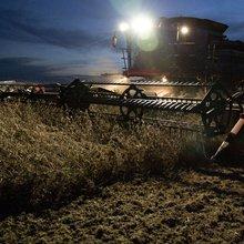 Bayer's $62 Billion Monsanto Bid Raises Alarm on Final Price