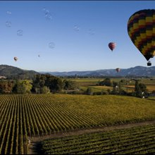 5 Things to Love About Napa