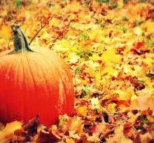 13 uses for pumpkins post-Halloween