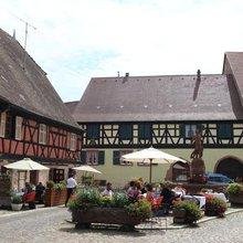 Japan's love affair with Alsace grows stronger