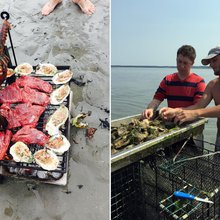 A Seafaring Outing That Will Make You an Oyster Fan Forever