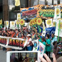 Adding Food into the Climate Equation: A Post-COP21 Agenda