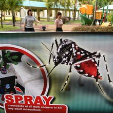 Sleepy Singapore suburb turned into Zika battleground
