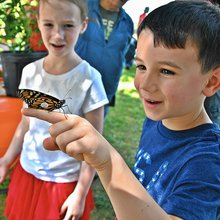 Bear Branch's annual monarch celebration aflutter with activity