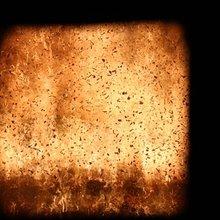 Nova Scotia feeling the burn on biomass