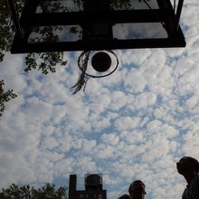 A New Arrival Explores New York Through Pickup Basketball