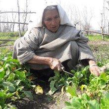 Uneducated women entrepreneurs defeat poverty - INSP News Service