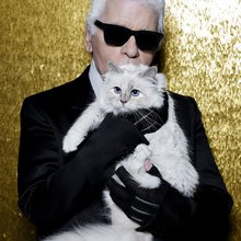"Choupette, Karl Lagerfeld's Cat, Is ""Devastated"" to Be a Victim of Instagram Hacking"