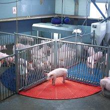 The Abstinence Method - Modern Farmer