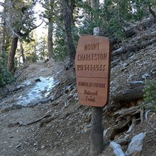 New Bill Could Allow Mountain Bikes Back Into Wilderness Areas
