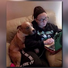 Photo of newly adopted pit bull snuggling mom goes viral