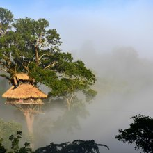 Treehouses on top of the world: Zip-lining to lodgings in Laos