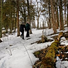 Where 'green' began   The piece of Wisconsin that inspired conservation legend John Muir