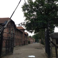 Remembering sacrifice and loss at Auschwitz