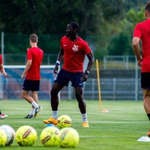 Emmanuel Eboué: Szívesen felhagynék futballal, és vigyáznék a kutyáira, felség