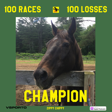 Zippy Chippy: Legendary Loser to Champion of Champions