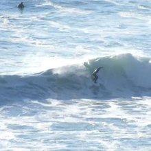 Surfer Gang Harassment Allegations Jump: Records