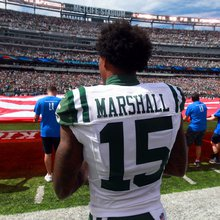 The New York Giants and Brandon Marshall: The fit is there, but so are questions