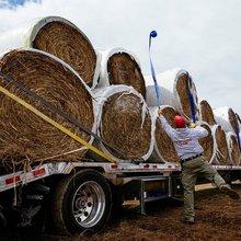 Rancher's generosity spreads like wildfire