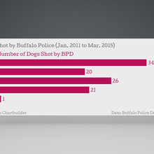 Dog Shootings By Buffalo PD Dropped Since WGRZ Story