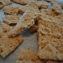Looking to Quell Sexual Urges? Consider the Graham Cracker