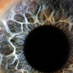 Futuristic Contact Lenses Come Into Focus: Photos
